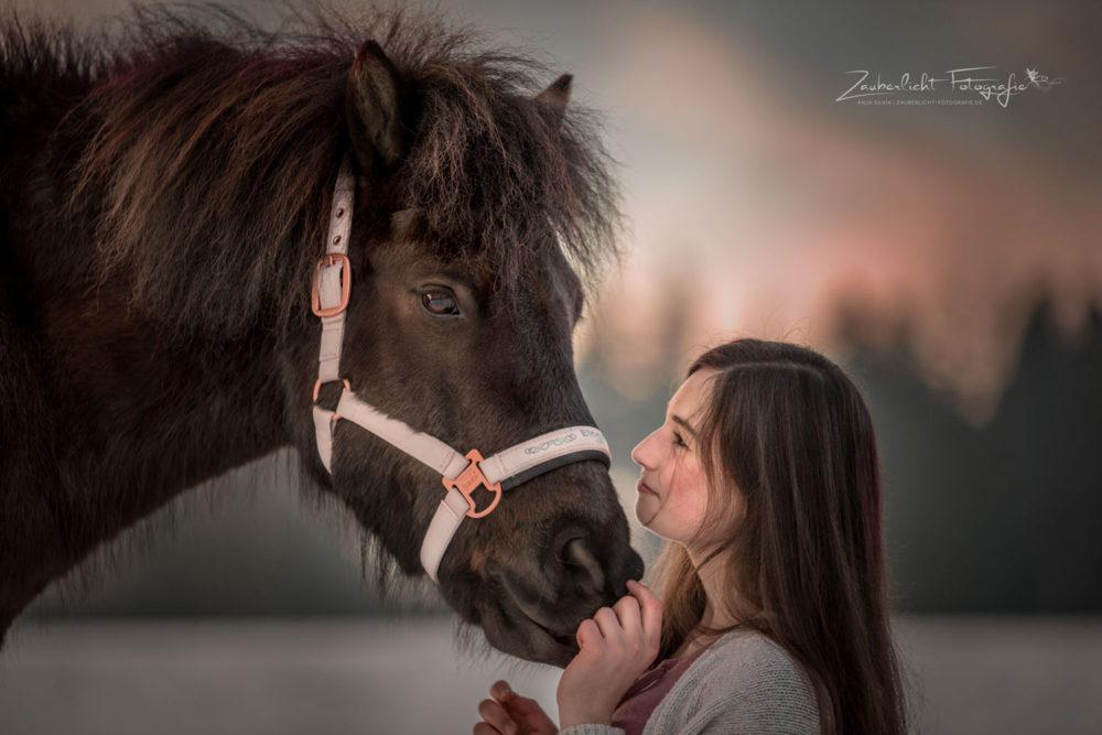 Pferdefotografie Hof Saale