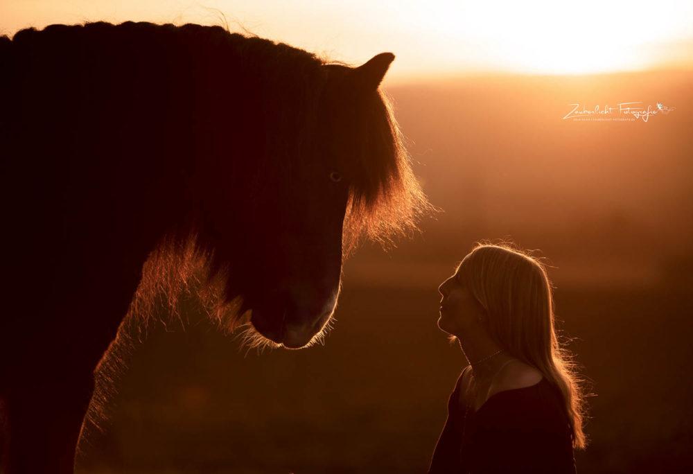 Pferde Shooting Bayreuth