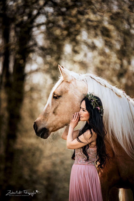 Pferdefotografie in Mainfranken