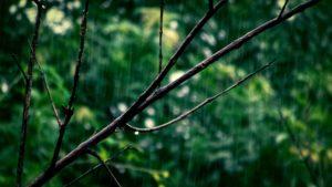 Regenwetter beim Shooting